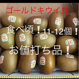 ゴールドキウイ 11-12個 食べ頃(フルーツ)