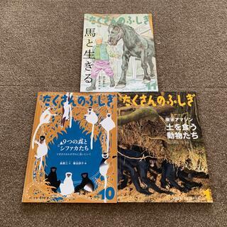 月刊 たくさんのふしぎ 動物シリーズ(絵本/児童書)