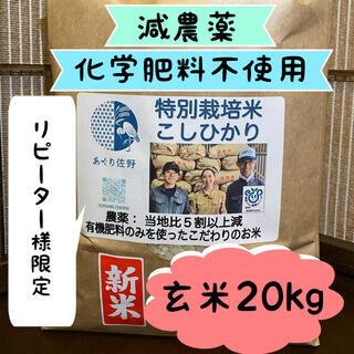特別栽培米 玄米20kg 減農薬 有機肥料 R2年 コシヒカリ