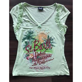 ドルチェアンドガッバーナ(DOLCE&GABBANA)のDOLCE&GABBANA Tシャツ レディース(Tシャツ(半袖/袖なし))