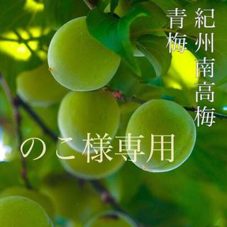 【訳あり】完熟梅 11kg Lサイズ 紀州南高梅(フルーツ)