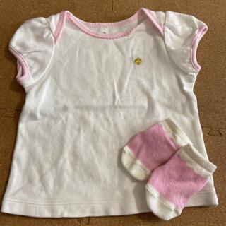 ケイトスペードニューヨーク(kate spade new york)のケイトスペードTシャツ&靴下セット(Tシャツ)