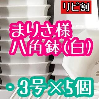 まりさ様 八角鉢(その他)