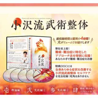 小沢流武術整体DVD