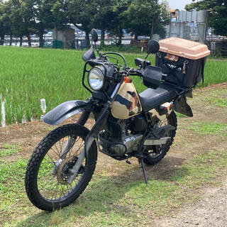 スズキ(スズキ)のDF200 スズキ バイク 自賠責36年5月迄 名変後乗り出しok(車体)