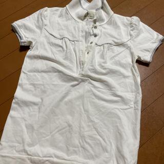 クミキョク(kumikyoku(組曲))の組曲 ポロシャツ(カットソー(半袖/袖なし))