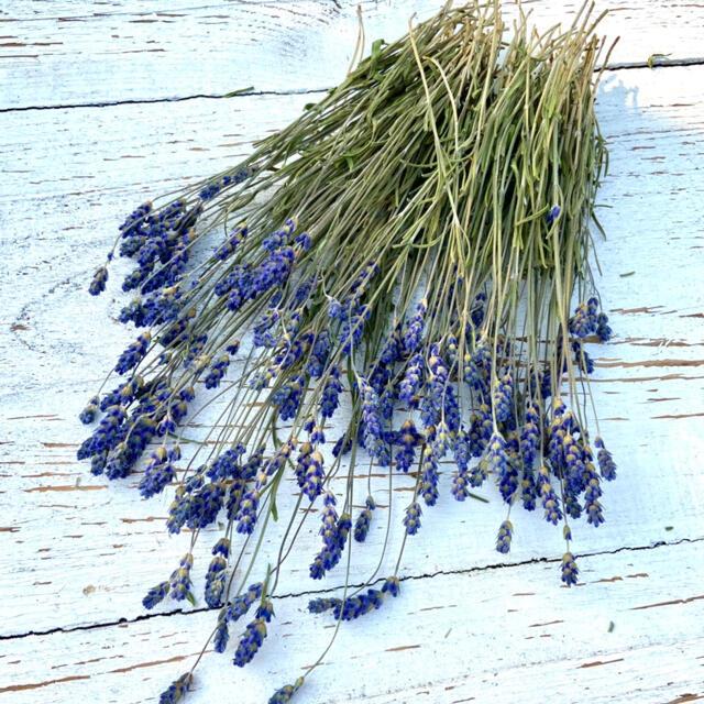 ドライ ラベンダー スワッグ 花束 サシェ ドライフラワー 花材 ハンドメイド ハンドメイドのフラワー/ガーデン(ドライフラワー)の商品写真
