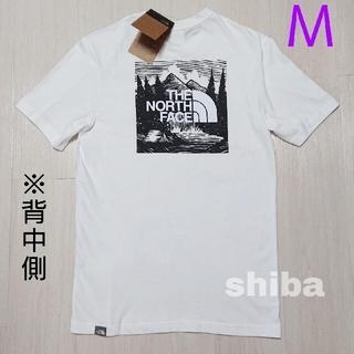 THE NORTH FACE - ノースフェイス tシャツ 白 Red Box Celebration  海外M