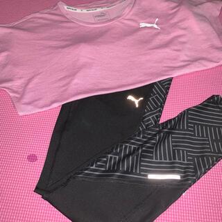 PUMA - 【プーマ】スポーツウェア レディース Tシャツ&レギンス  2点SET