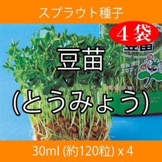スプラウト種子 S-07 豆苗(とうみょう) 30ml 約120粒 x 4袋(野菜)