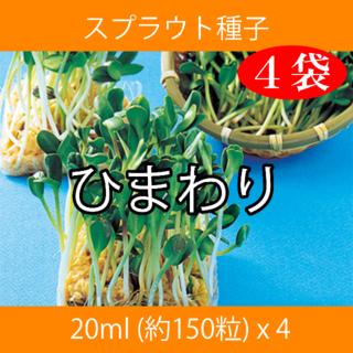 スプラウト種子 S-05 ひまわり 20ml 約150粒 x 4袋(野菜)