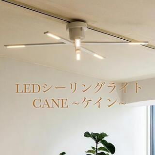 LED シーリングライト ケイン CANE ホワイト 北欧 照明 IKEA風(天井照明)