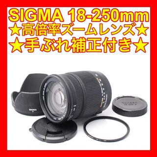 シグマ(SIGMA)の⭐️シグマ 18-250mm DC OS HSM⭐️キャノン用⭐️(レンズ(ズーム))