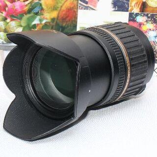 タムロン(TAMRON)の❤️希少品❤️タムロン 17-50mm XR DiⅡ SP ニコン用❤️(デジタル一眼)
