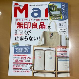 バッグinサイズ Mart (マート) 2021年 06月号(生活/健康)