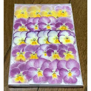 A④ 銀の紫陽花が作った可愛いピンクビオラのドライフラワー(ドライフラワー)