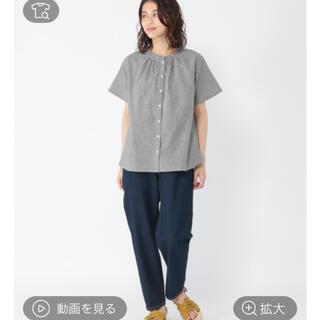 スタディオクリップ(STUDIO CLIP)のシングルガーゼアソートフリル襟ブラウス(シャツ/ブラウス(半袖/袖なし))
