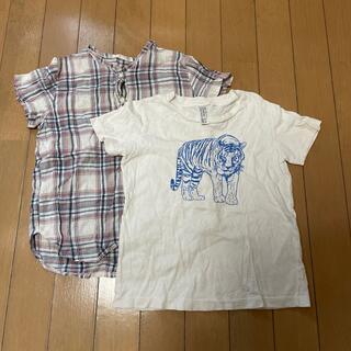 ボンポワン(Bonpoint)のkotakem様専用 マキエTシャツおまとめ(Tシャツ/カットソー)