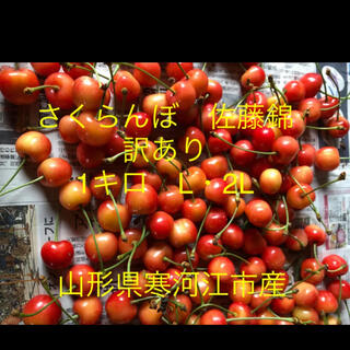 さくらんぼ 佐藤錦1キロ L・2L 山形県寒河江産 農園直送(フルーツ)