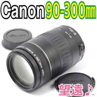 Canon - ✨大迫力の望遠レンズ♪✨キヤノン Canon EF 90-300㎜