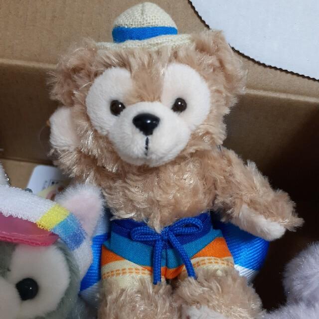 ダッフィー(ダッフィー)のダッフィー サニーファン エンタメ/ホビーのおもちゃ/ぬいぐるみ(キャラクターグッズ)の商品写真