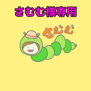さむむ様専用  6/12(調味料)