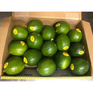 メキシコ産ライチ15玉入り 防カビ剤不使用(フルーツ)