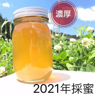 【濃厚】新蜜 天然蜂蜜 百花蜜 非加熱 生はちみつ 550g(調味料)