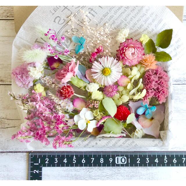 ドライフラワー花材セットNo.188⁑ピンク❇︎赤❇︎グラデーション ハンドメイドのフラワー/ガーデン(ドライフラワー)の商品写真