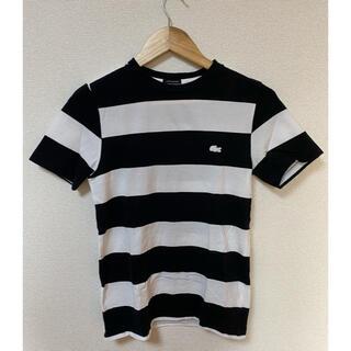 ラコステ(LACOSTE)のLACOSTE BEAUTY&YOUTH     コラボ ボーダーT(Tシャツ/カットソー(半袖/袖なし))