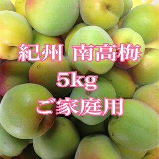 南高梅 5kg  (野菜)