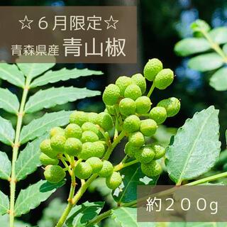 【期間限定】青山椒 約200g 無農薬 青森県産 2021年産(野菜)