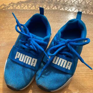 プーマ(PUMA)のPUMA スニーカー17cm (スニーカー)