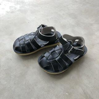 コドモビームス(こども ビームス)のソルトウォーター 黒 6 saltwater sandals shark(サンダル)