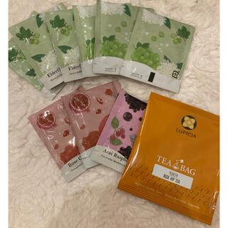 セイカツノキ(生活の木)のティーバック 10袋セット(茶)