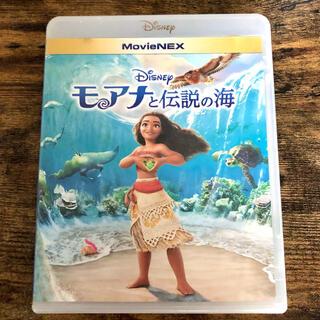 Disney - Disney モアナと伝説の海 DVD&Blu-ray