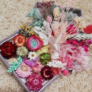 花材 プリザーブドフラワー ドライフラワー ハーバリウム花材 在庫整理