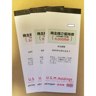 USMH ユナイテッドスーパーマーケット 株主優待券 13000円分 (ショッピング)