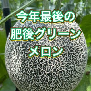 産地直送 熊本県産 肥後グリーンメロン 特大2玉入り(フルーツ)