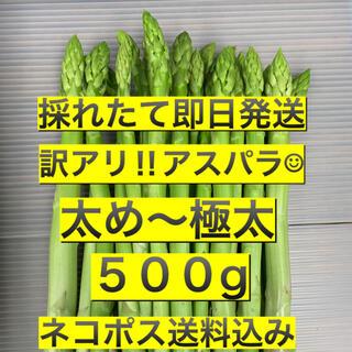 訳アリ‼︎アスパラ☺︎500g(野菜)