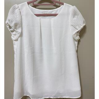 PROPORTION BODY DRESSING - 美品 PROPORTION 白のギンガムチェックシャツ