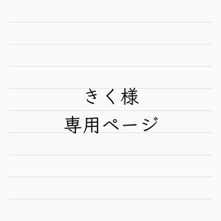 きく様専用ページ リーメント ミニチュア(ミニチュア)