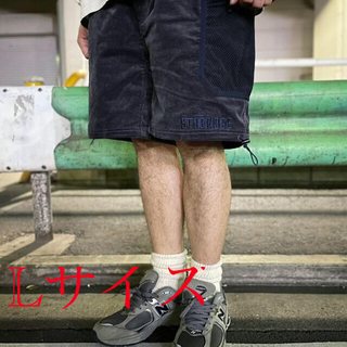 THE NORTH FACE - the apartment STABRIDGE × GRIP SWANYショーツ