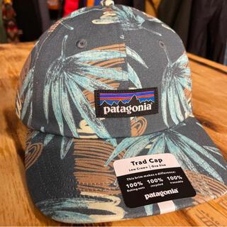 patagonia - patagonia 新作 p6キャップ