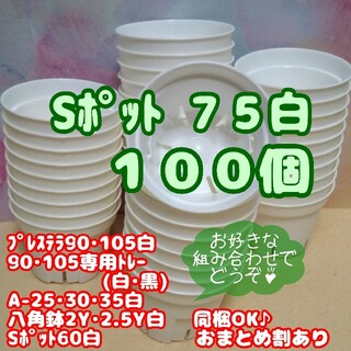 Sポット75 白 100個 2.5号 丸型スリット鉢プレステラ 多肉植物 プラ鉢(プランター)