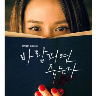 韓国ドラマ 浮気したら死ぬ ブルーレイ(韓国/アジア映画)