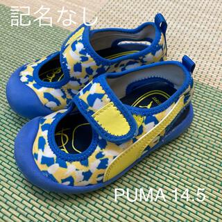 プーマ(PUMA)のPUMA サンダル 14.5(サンダル)