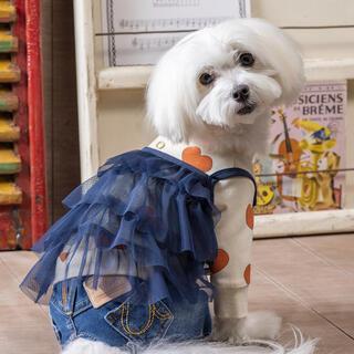 アズノウアズ(AS KNOW AS)のアズノゥアズ シアーダンドールキャミ 犬 犬服 ペット 服(犬)