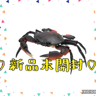 BANDAI - カニ かに ガチャ ノコギリガザミ
