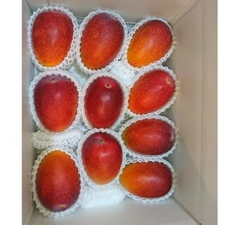 宮崎産 完熟マンゴー 3.4kg ご自宅用(フルーツ)